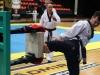 Vienna Taekwondo Festival 2017