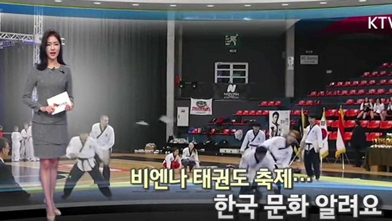 koreatv-vienna-taekwondo-festival-1280x720.jpg